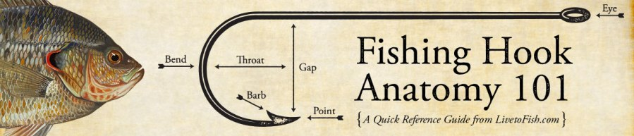 Fishing Hook Anatamy 101 - Learn about the different parts of a fishing hook and what they are used for.