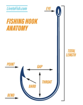 Fishing Hook Anatomy