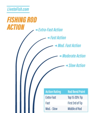 Fishing Rod Action Diagram