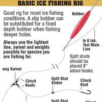 bait-rigging-chart